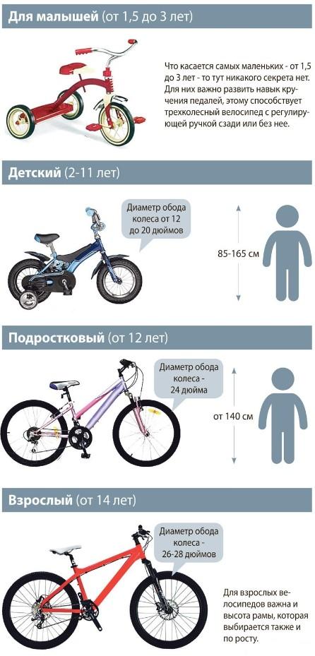 Так, велосипед для подростков будет уже с дюймовыми колесами.